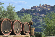 Nobile di Montepulciano Wine Private Tour